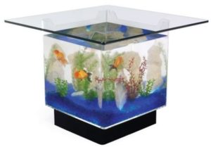 So Instead Of Your Traditional Boring Coffee Table You Can Have A Filled With Water Surrounded By Gl Fish Swimming Around